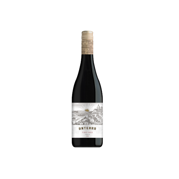 Anterra Pinot Noir